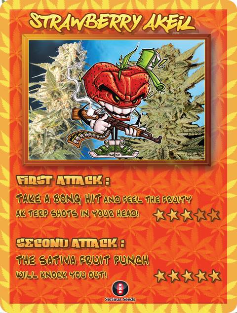 Strawberry AKeil strain cannabis seeds 4